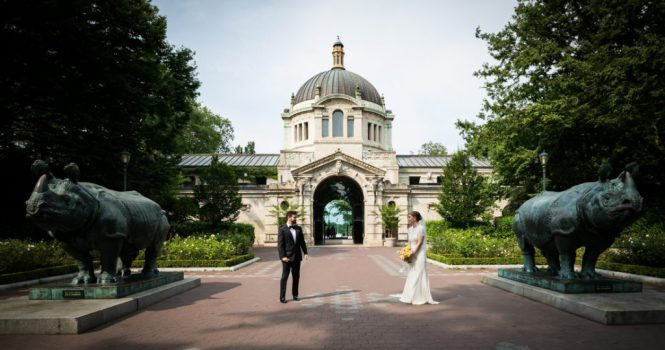 First look at a Bronx Zoo wedding