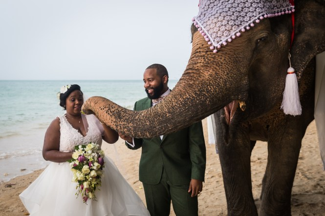 Bride and groom and elephant for an article on destination wedding photography tips
