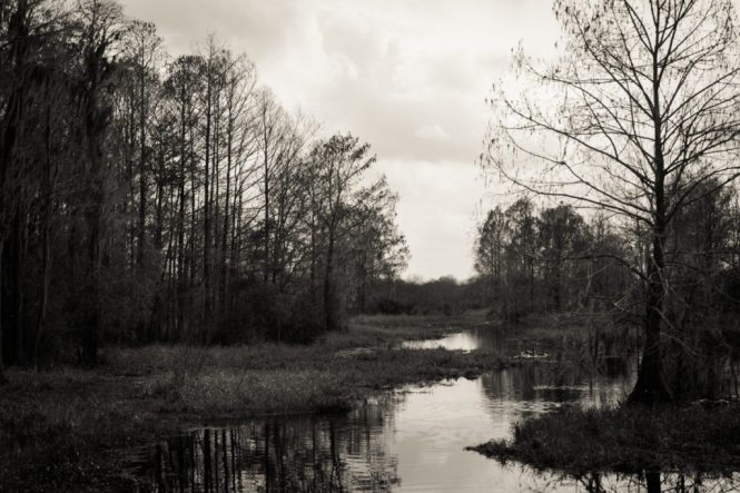 A wide shot of Cross Creek