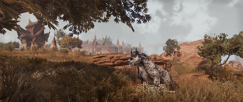 Scenery from  The Elder Scrolls Online: Elsweyr chapter with a cat like animal in the foreground and a cit y in the background.