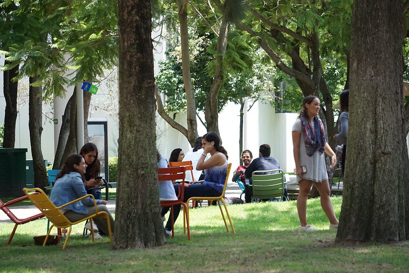 Students sitting and standing in small groups in the shade of trees at the Tecnológico de Monterrey in Guadalajara.