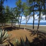 Des plages de sable volcanique