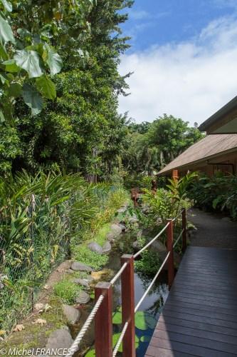Les jardins de l'Assemblée territoriale