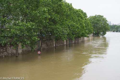 IMX_1806 La Seine en crue