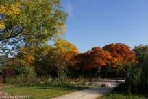 Devant l'arboretum