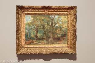 exposition Eugène Delacroix - Sous-bois, environs de Sénart - vers 1850
