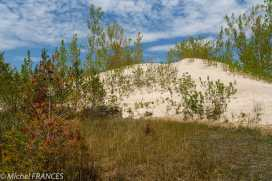 Quinte Island - Dunes trail