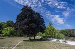 Bois de Vincennes - L'été