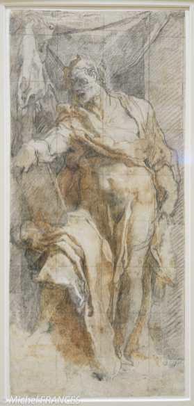 Fondation Custodia - expo 500 dessins musée Pouchkine - Taddeo Zuccaro - Un prophète avec un livre dans la main droite - 1553-1556