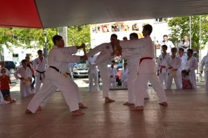 Tae Kwon Do Bruchtest