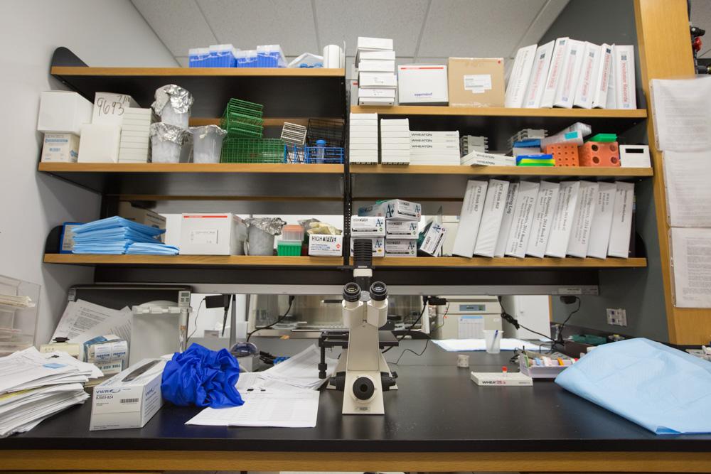 Polio and Picornavirus Laboratory