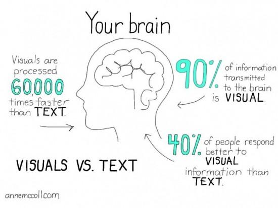 human-brain-visuals-text