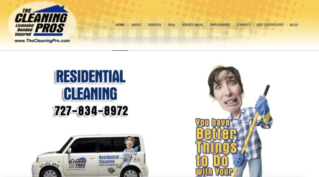 the cleaning pros homepage