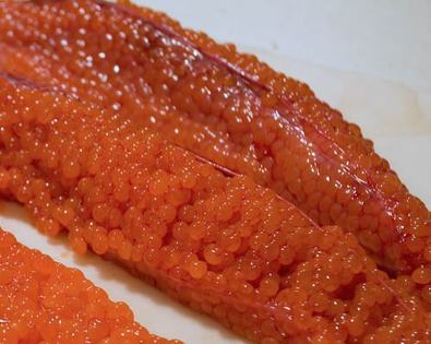 salmon skein (fish eggs still in the membrane)