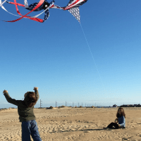 Picking out a kite? Let us help!