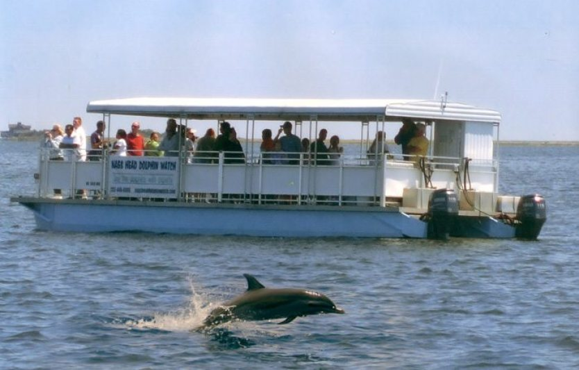 Nags Head Dolphin Watch tour bateau ponton
