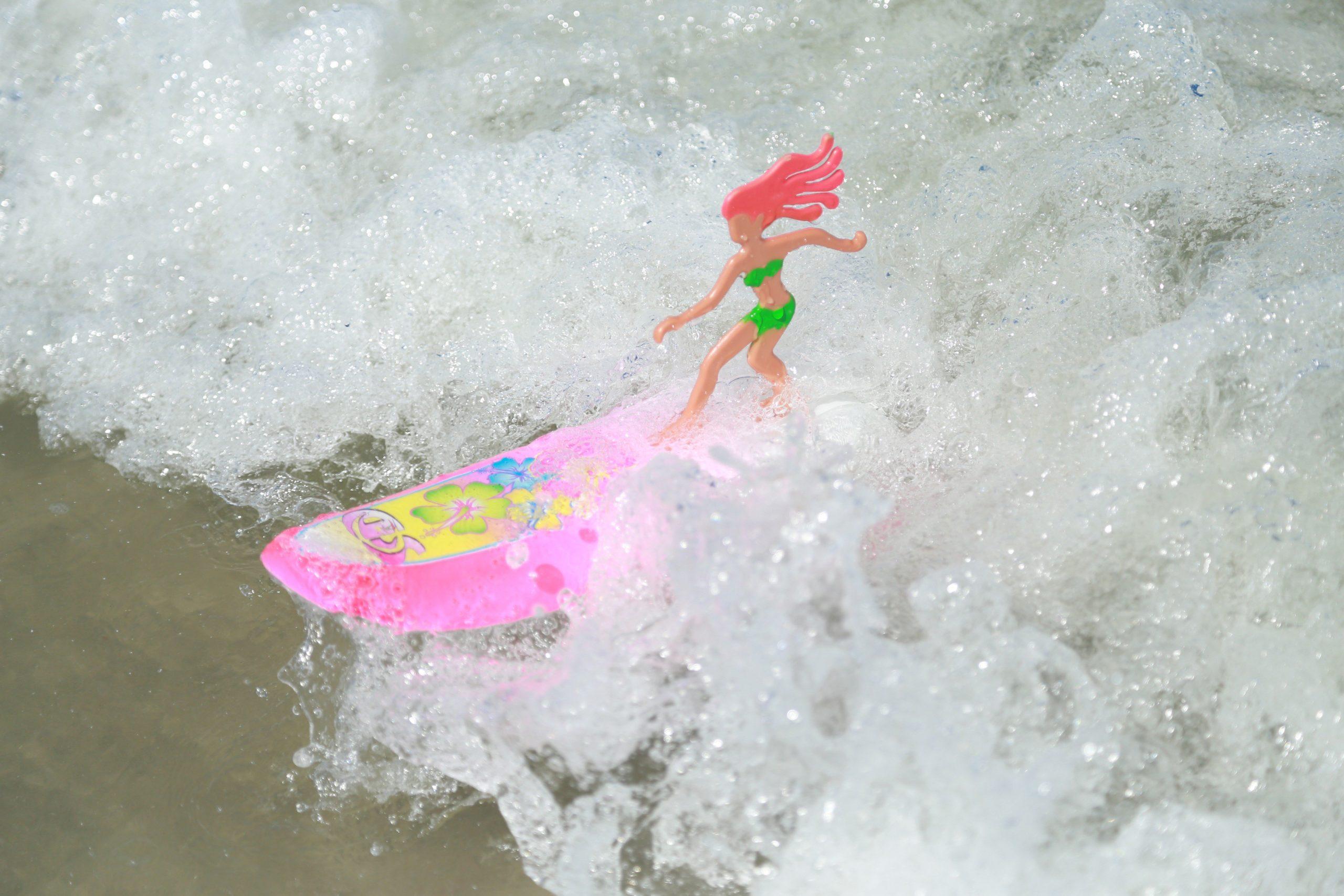 Surfer Dudes toy