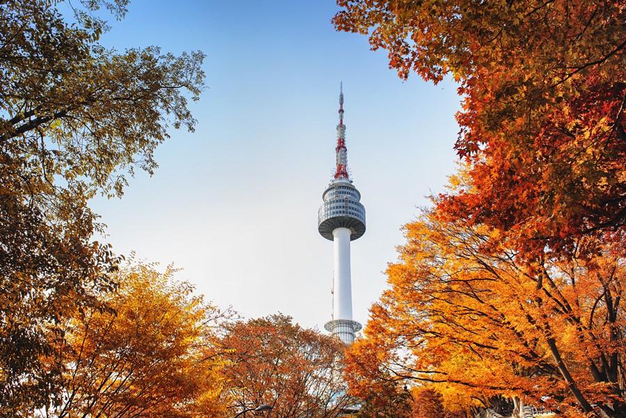 韓國首爾賞楓行程 首爾南山公園 首爾塔
