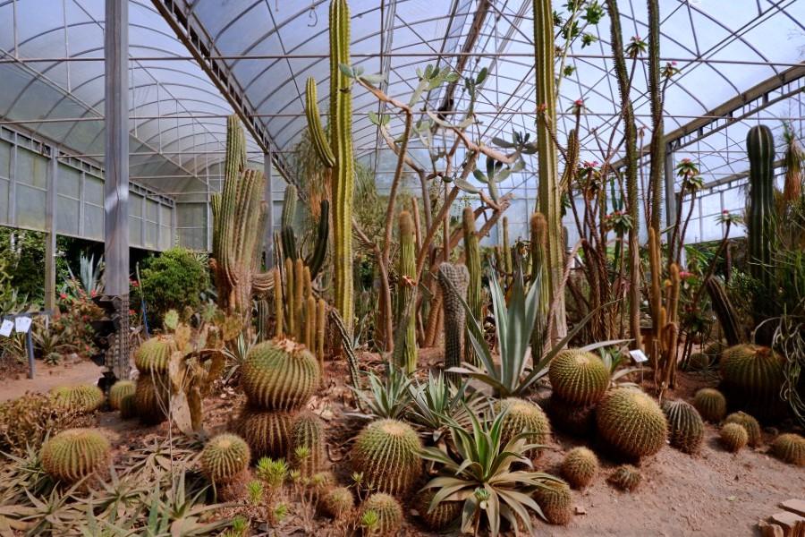 綠世界生態農場/新竹綠世界農場/新竹親子景點
