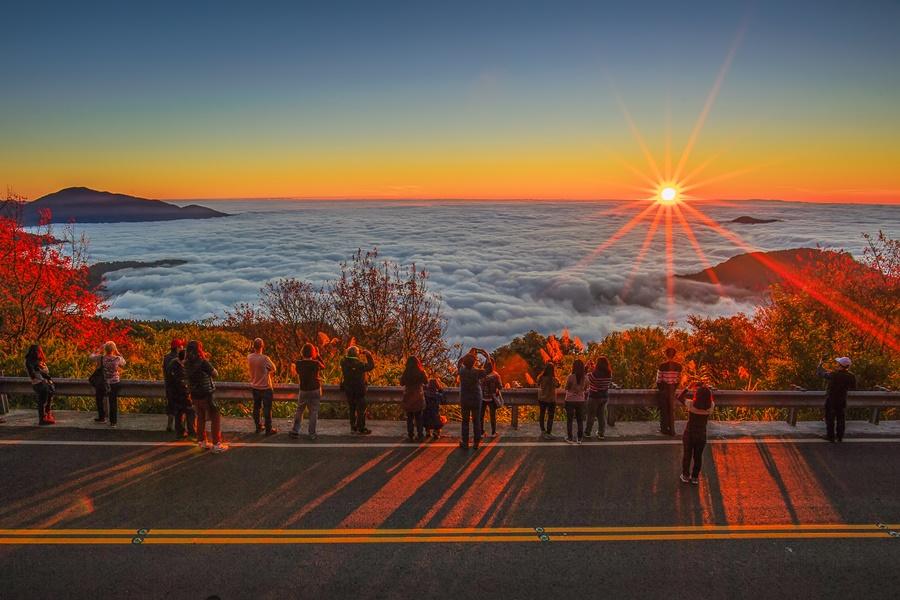 阿里山日出/阿里山雲海/阿里山景點