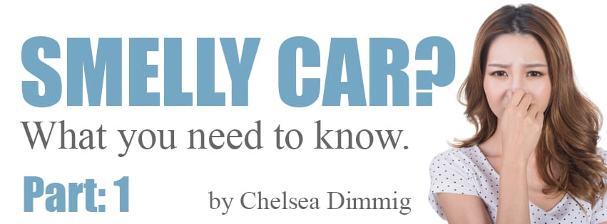 Smelly car solutions