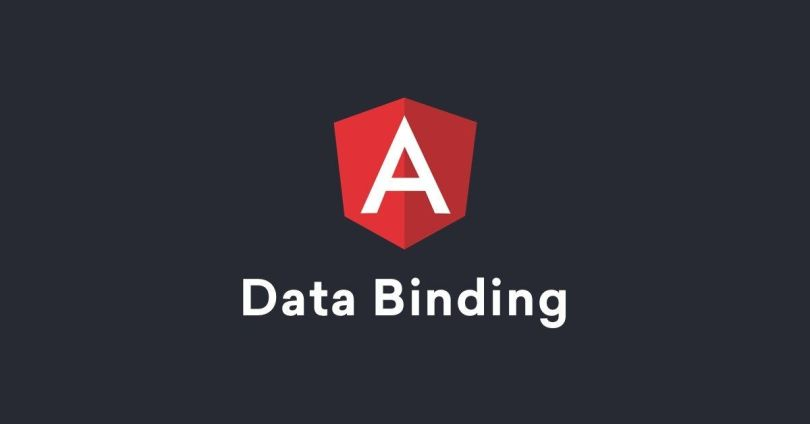 Angular Data Binding