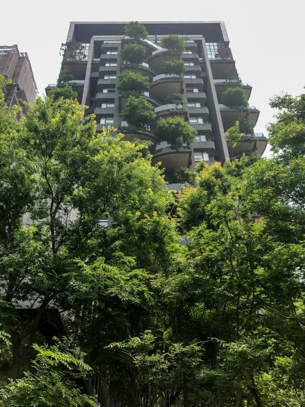 『半畝塘 若山』城市造山・節氣生活 1