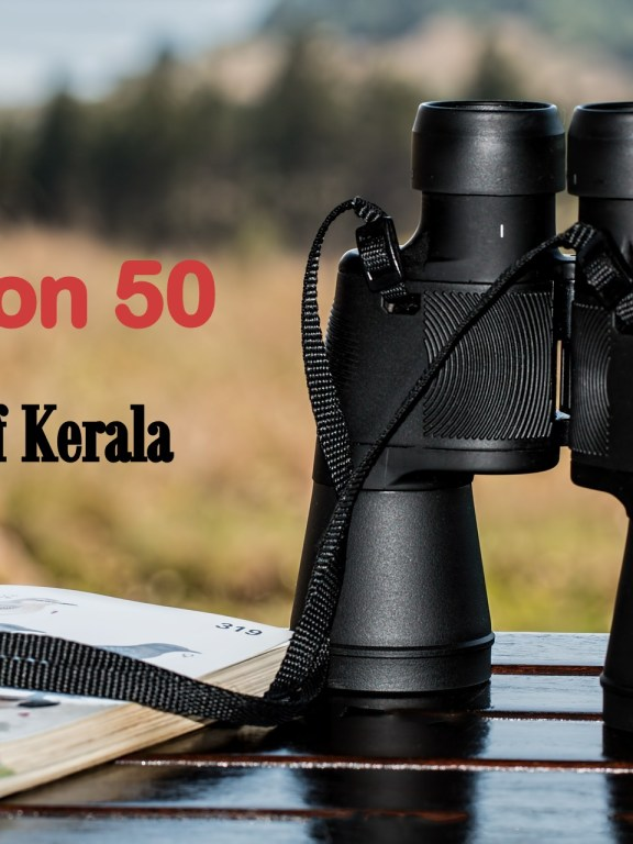 Mission 50 – Birds of Kerala