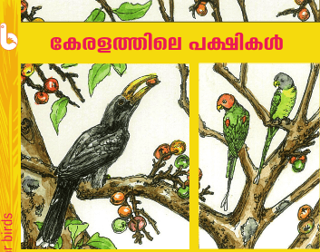Birds of Kerala; Early Bird Pocket Guides