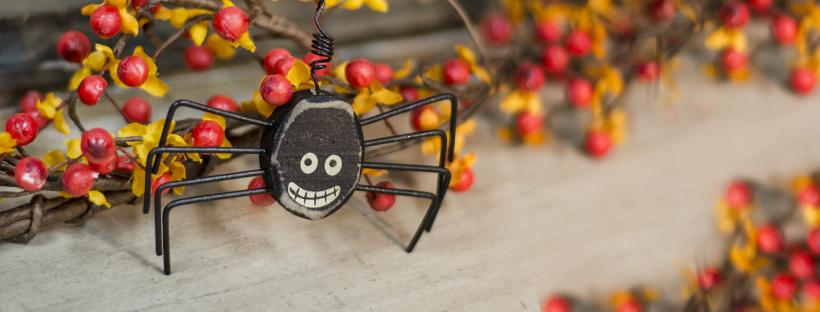 halloween window happy spider