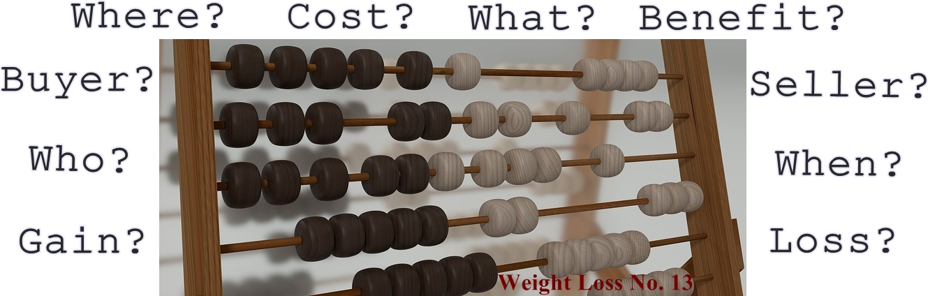 Profits and Losses – Weight Loss No. 13