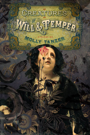 Book Review: Creatures of Will & Temper by Molly Tanzer | reading, books, book review, fantasy, historical fantasy, paranormal/urban fantasy, lgbt, demons