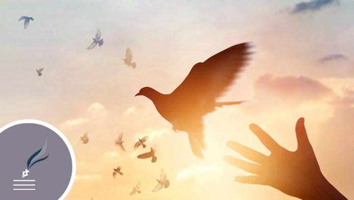 Cesta k slobode vedie cez odpustenie