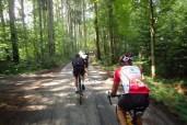 weiter über die Waldautobahn