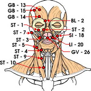 Pressure Points of the head