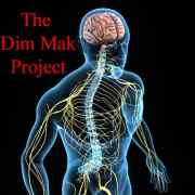 Dim Mak Project - A Modern Look at the Ancient Death Touch