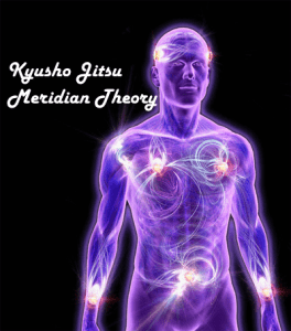 Kyusho Jitsu Meridian Theory
