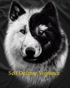 Self Defense means Vigilance
