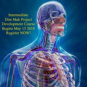 Intermediate Dim Mak Development Course