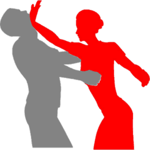 Understanding Self Defense Today