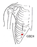 Pressure Point Gall Bladder 24 - Our Series on Pressure Points.