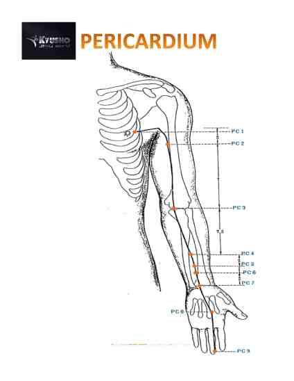 The Pressure Point Pericardium 6