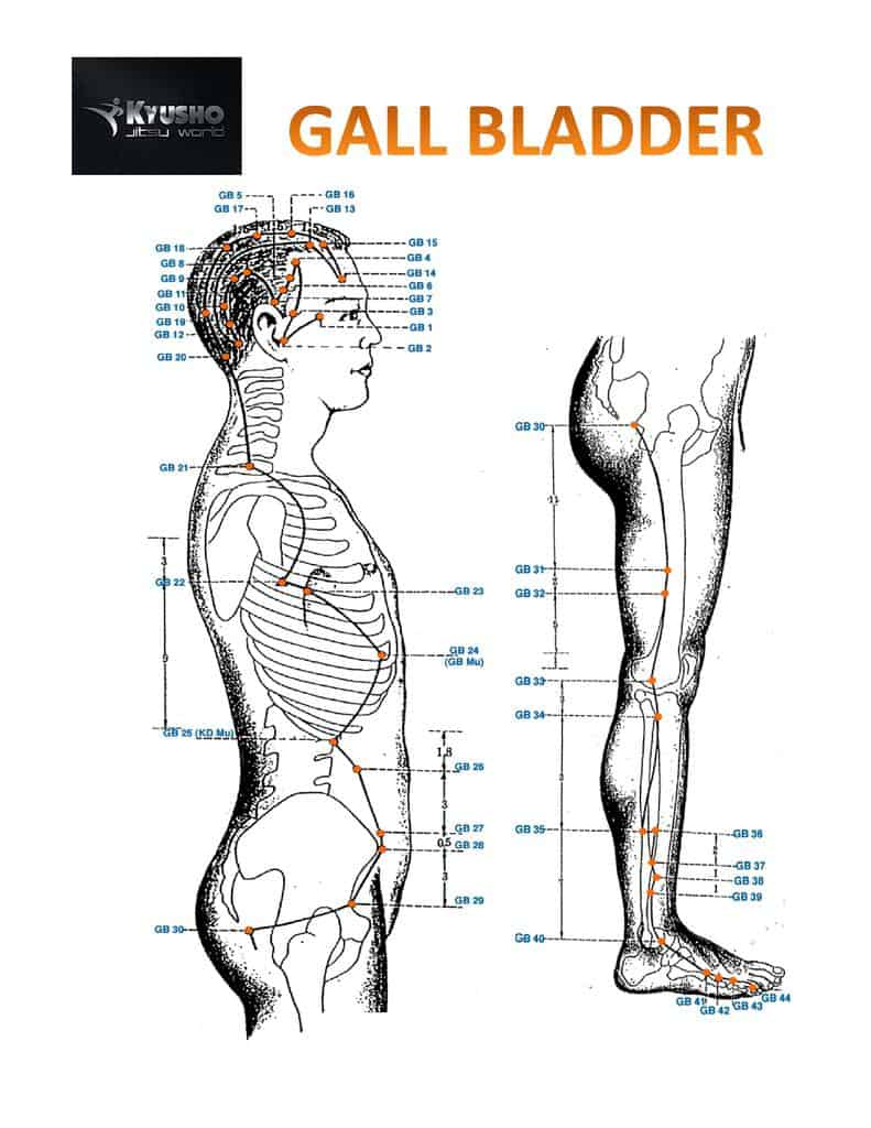 The Gall Bladder Meridian