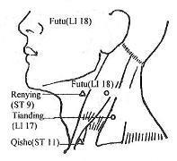 The Pressure Point Large Intestine 18
