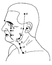 Pressure Point Stomach 9-10 - VERY Dangerous Pressure Points