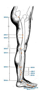 3 Crippling Leg Pressure Points GB-31