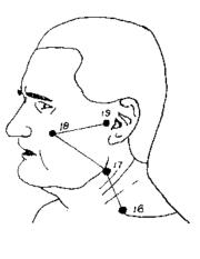 Pressure Point SI-16 [Small Intestine] - Deadly Pressure Point