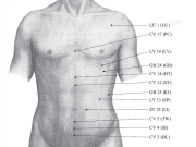 Alarm Point ST-25 [Stomach Meridian] and its Effects on the Body