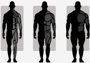 Kyusho Jitsu Body Typing - What Element Are You? Learn More Now!