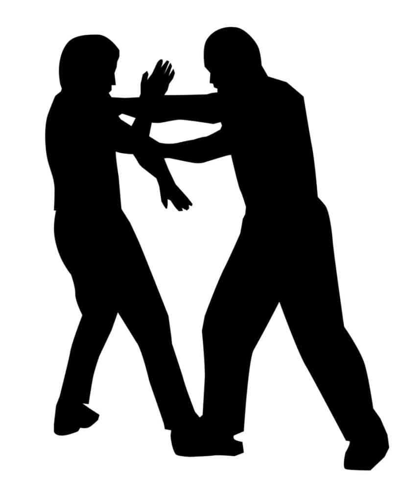 * Martial Art Defensive Tactics